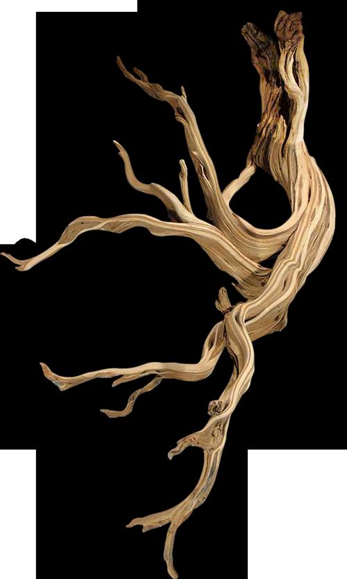 bois-flantant