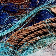 maine-bateau-peche-Norvege-marine-sas-saumon-produits-frais-label-rouge-seafood-import-export